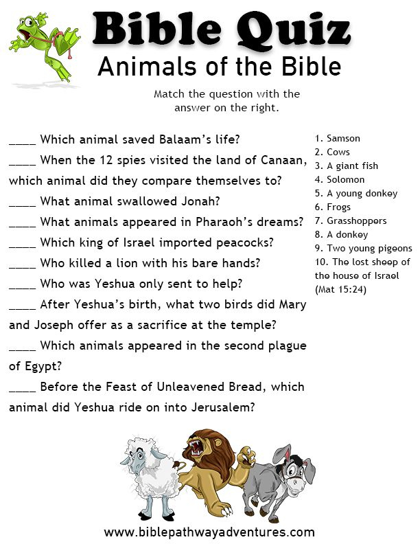 32 Fun Bible Trivia Questions KittyBabyLove